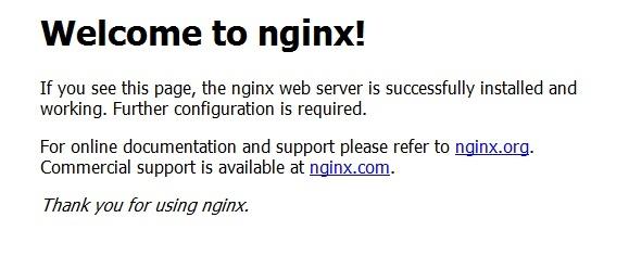 nginx home page